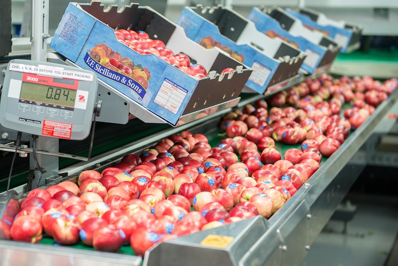 australian nectarines for export to China Huizhan